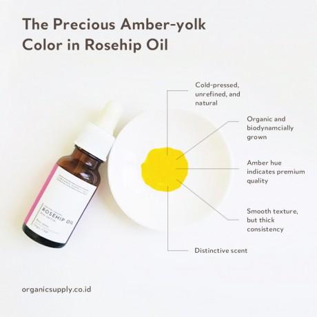 Rosehip Oil 20ml